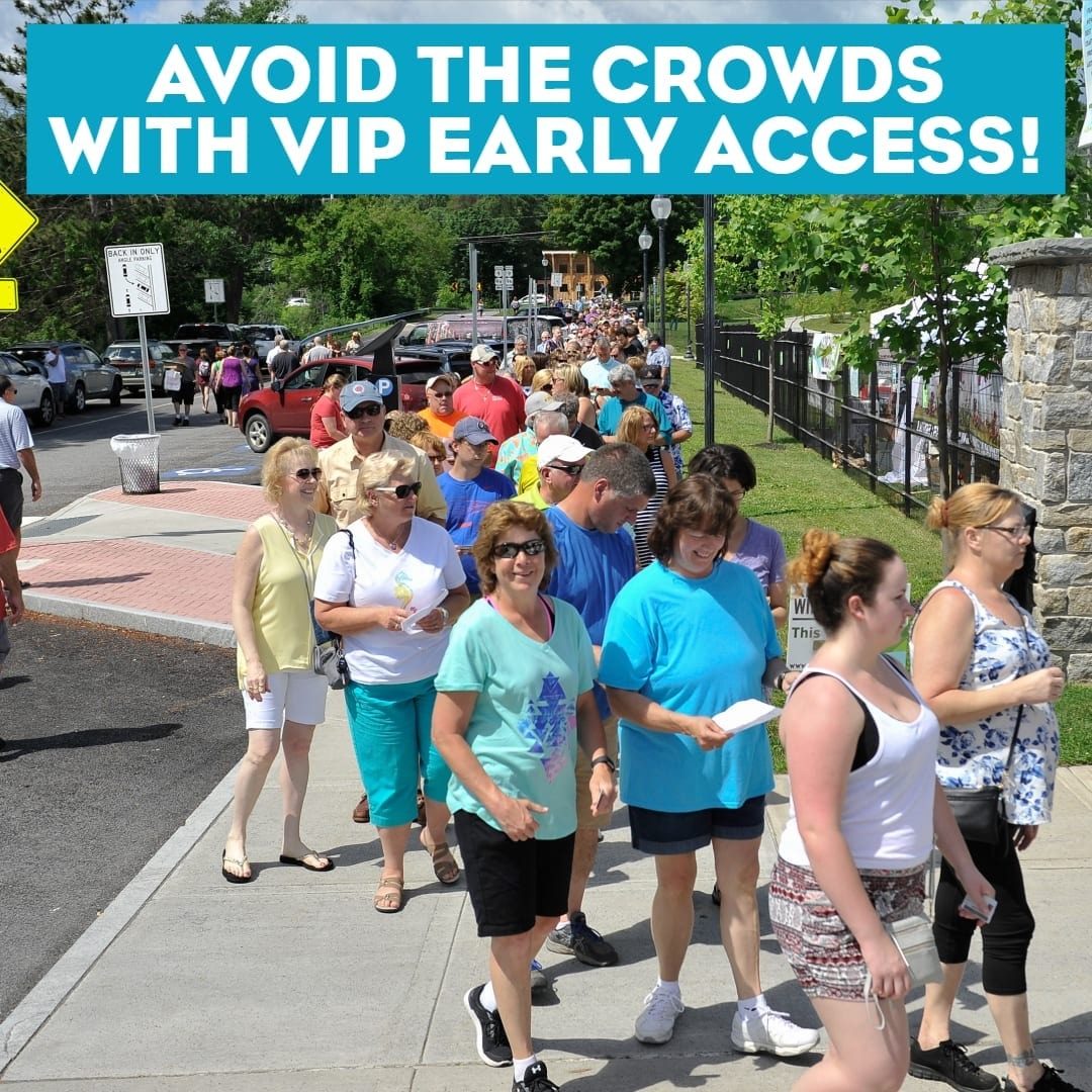 Cut the line with the VIP designated entrance!